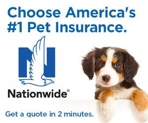 Prescott Valley Pet Clinic Veterinarian In Prescott Valley Az Usa