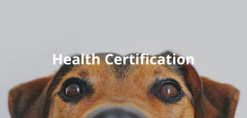 health certification